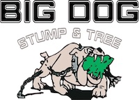 Big Dog Stump and Tree logo- Claysoot page | Westminster