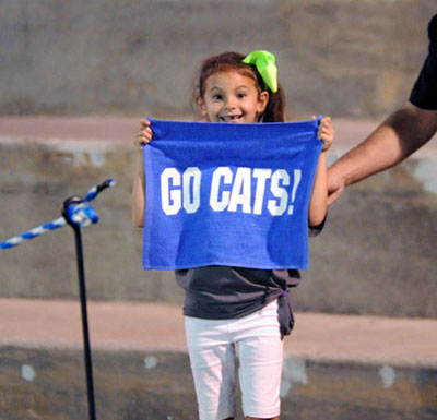 go cats towel | Westminster