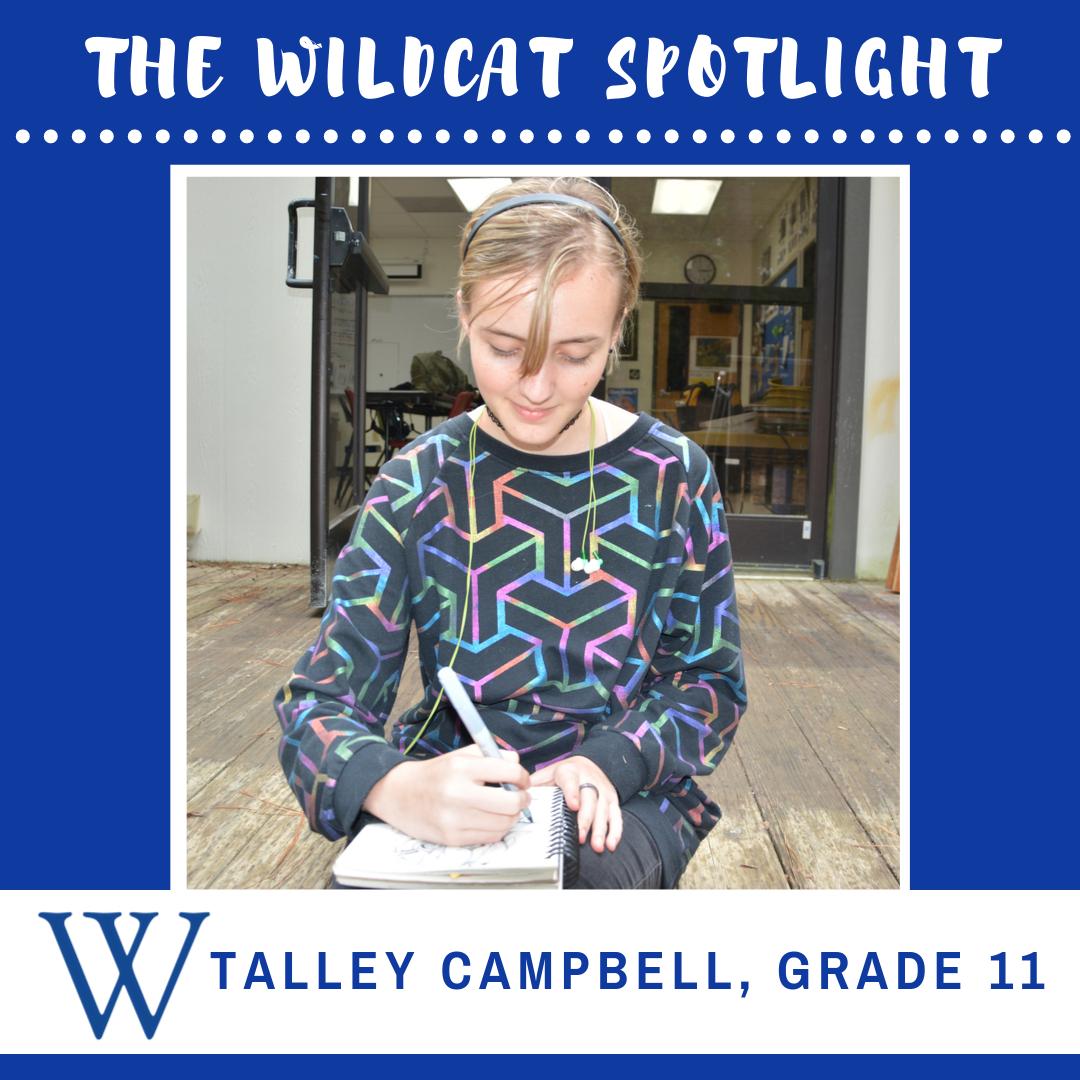Wildcat Spotlight Talley | Westminster